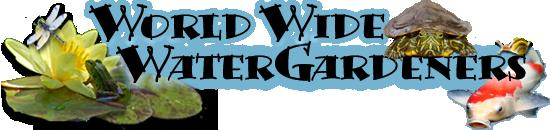 World Wide Water Gardeners